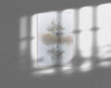 Dapper boompje van Monique Visser
