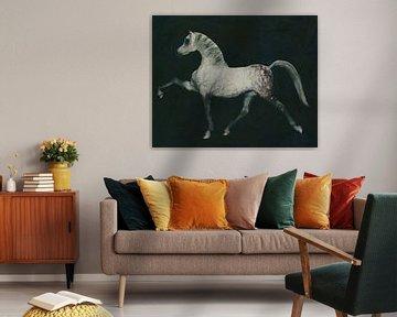 Paard doet een dressuur oefening