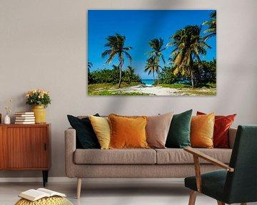 Stranddoorgang met palmbomen, beach van Corrine Ponsen