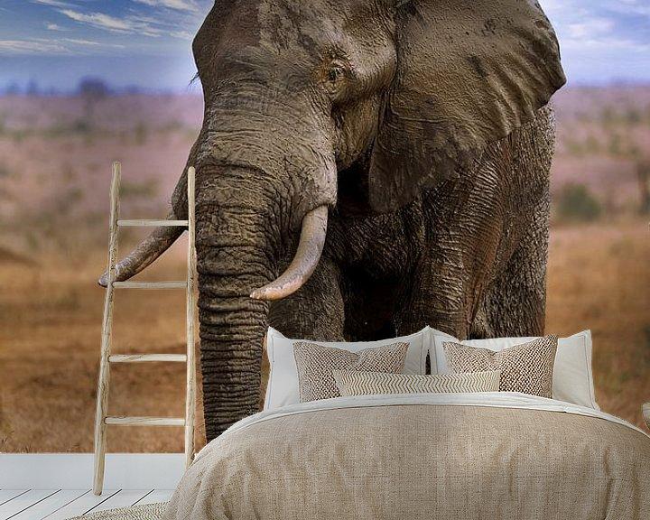 Beispiel fototapete: Großer Elefant wandert durch den Etosha Nationalpark in Namibia von W. Woyke