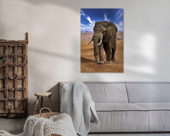 Beispiel: Großer Elefant wandert durch den Etosha Nationalpark in Namibia von W. Woyke