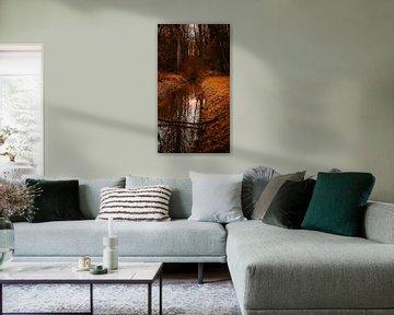 Surreale Waldlandschaft von Pim Haring