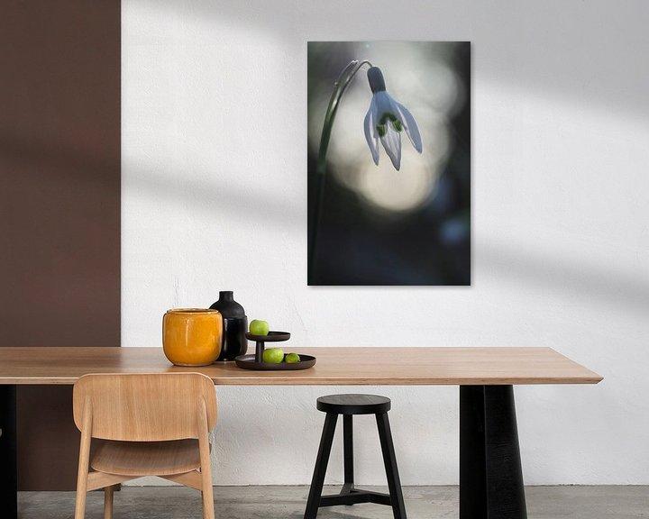 Beispiel: Schneeglöckchen im Sonnenlicht von Astrid Brouwers