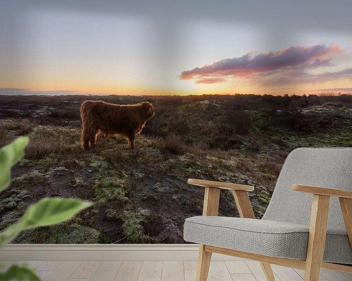 Impression: Veau écossais Highlander au sommet d'une dune au lever du soleil sur Remco Van Daalen