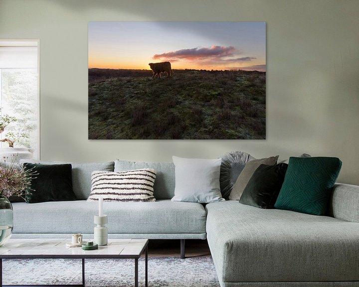 Sfeerimpressie: Schotse Hooglander Kalf op duintop tijdens zonsopkomst van Remco Van Daalen