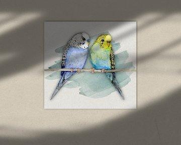 Twee schattige grasparkietjes aquarel van Bianca Wisseloo