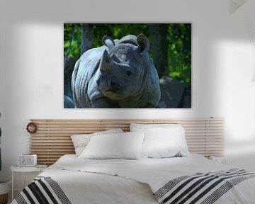 Rhinozeros (Zeichentrickfilm) von FotoGraaG Hanneke