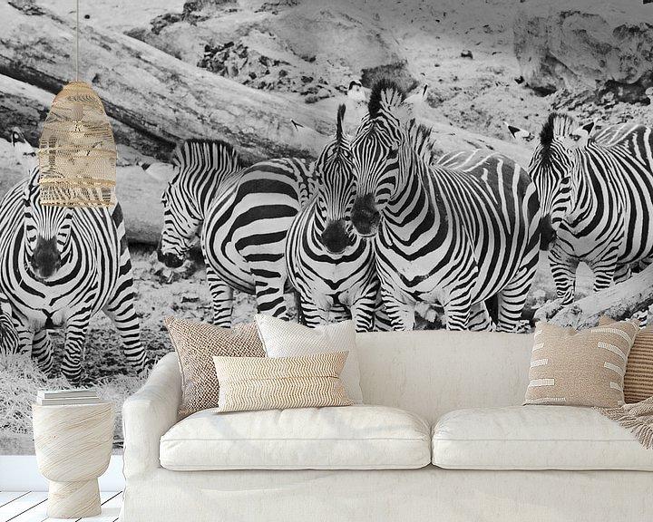 Beispiel fototapete: Zebra-Gruppe von Martine Moens