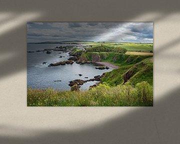 Felsküste bei St. Abbs Head in Schottland von Arja Schrijver Fotografie