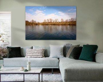 Neckar rivier in zon en onder blauwe hemel met gras en bomen van creativcontent