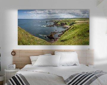 Panorama St Abbs Head in Schottland von Arja Schrijver Fotografie