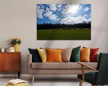 Schöne und sonnige grüne Landschaft mit Wald unter blauem Himmel von creativcontent