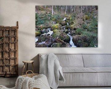 Riviertje uitmondend in de Triberg watervallen van creativcontent