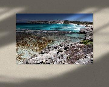 Pennington Bay, Kangaroo Island van Dirk Rüter
