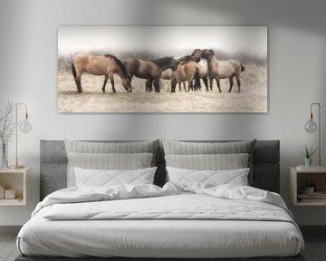 Konik paarden van Karel Ton