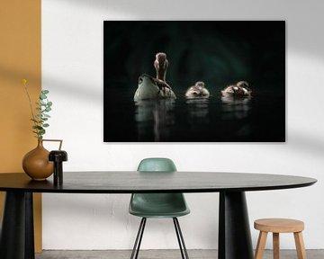 Moeder eend met haar twee kleine eendjes van Daniel Parengkuan