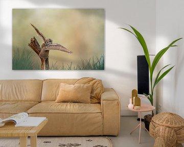 Ein detaillierter Uhu mit ausgebreiteten Flügeln landet auf einem Baumstumpf. Brauner gelber Himmel  von Gea Veenstra