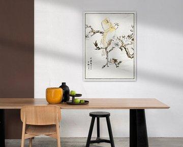 Kanarienvogel und Pfirsich Illustration von Numata Kashu von Studio POPPY