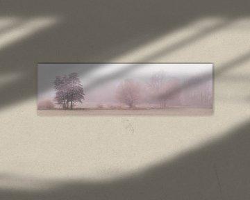 Paysage pittoresque dans le brouillard