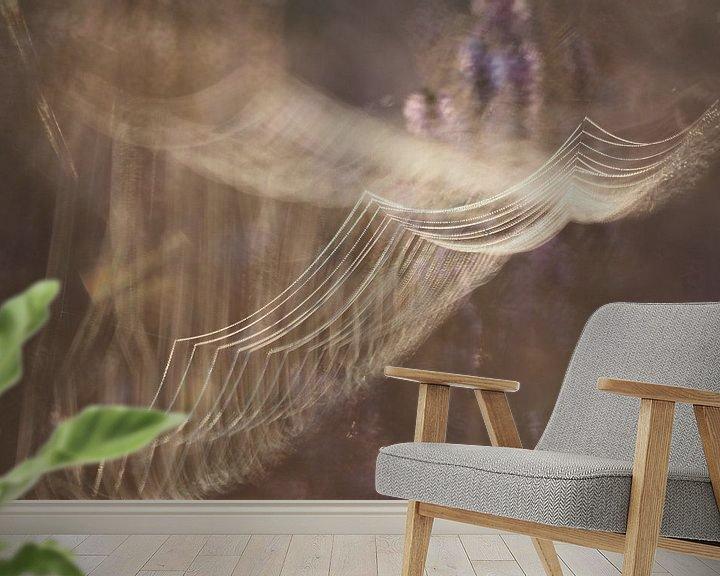 Beispiel fototapete: Spinnennetz bei Sonnenaufgang von Astrid Brouwers