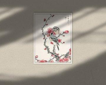 Fichtenammer und Pflaumenbaum Illustration von Numata Kashu von Studio POPPY
