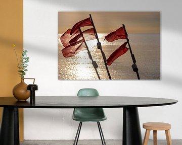 Vlaggen van een Ficherboat van Stephan Schulz