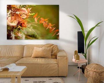 Beautiful flowers van Lindsey Post