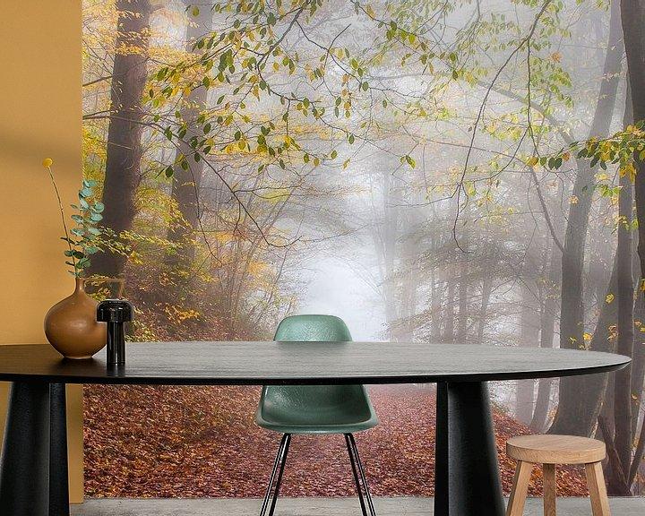 Beispiel fototapete: Herbst in Frahan von Peschen Photography