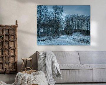 Winterlandschaft in Axel von Wesley Kole