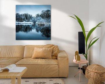 Winters landschap Axel van Wesley Kole