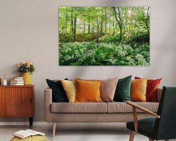 Frühling im Wald von Katrien Buysse