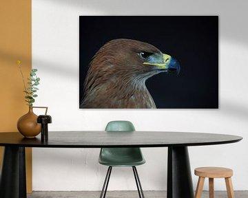 Porträt eines Adlers von Astrid Brouwers