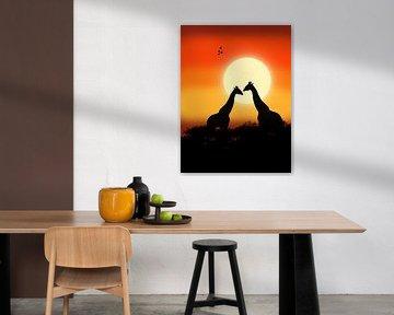Girafes au coucher du soleil