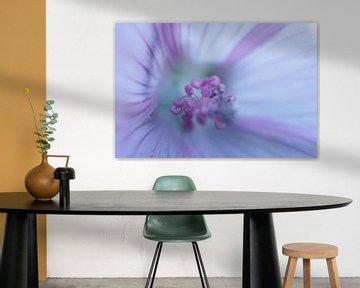 Wilde Blume von Astrid Brouwers