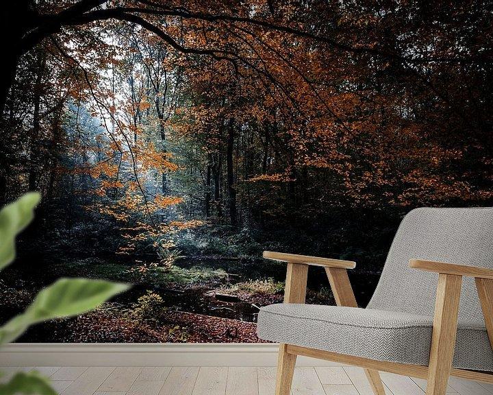 Sfeerimpressie behang: Waterloopbos in Marknesse van Eddy Westdijk