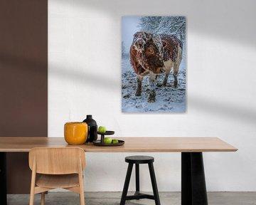 Koe met ijspegels van Luca Conrad Photography