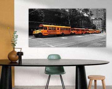 New Yorks School buses van Hannes Cmarits