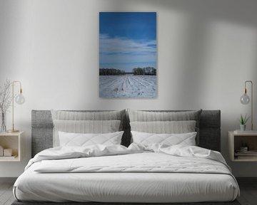 sneeuwlandschap van Andre Klooster