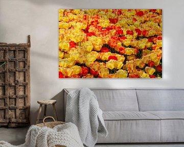 Bloemen zee van gele & rode tulpen, in Istanbul, Turkije. van Eyesmile Photography