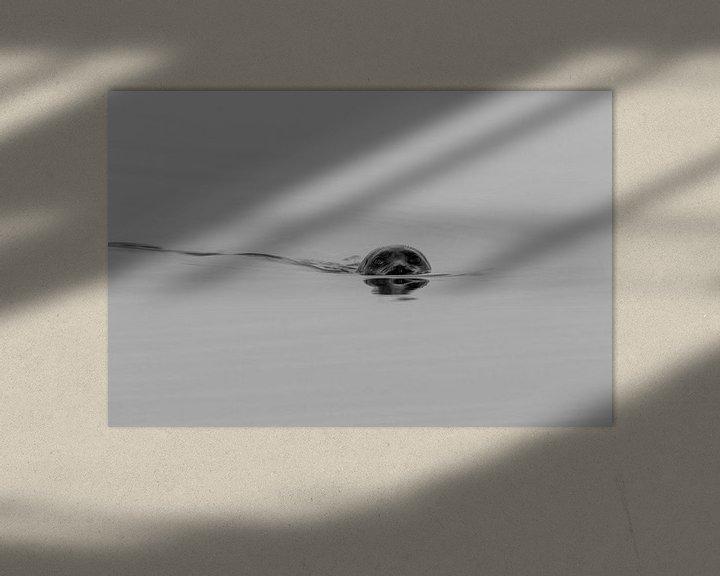 Beispiel: Dichtung schwarz/weiß (2) von Anjo ten Kate