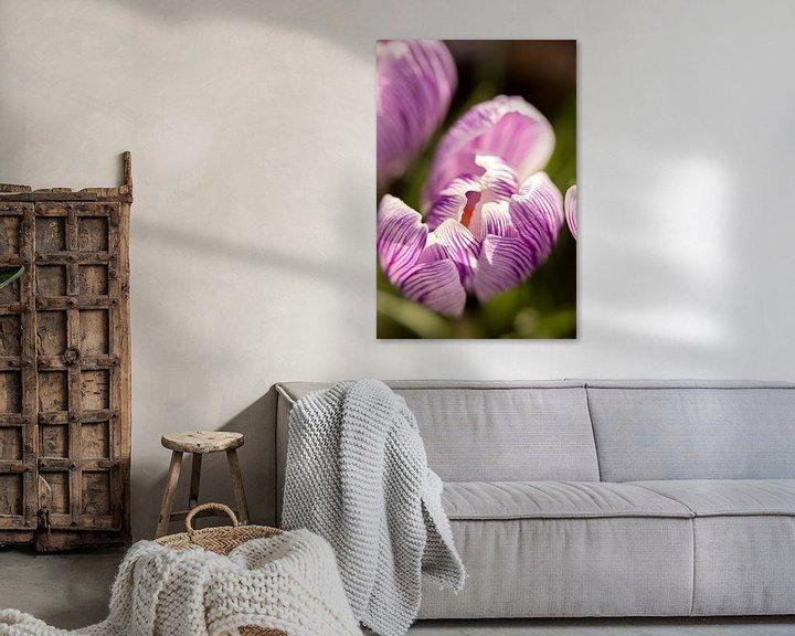 Sfeerimpressie: macrofoto van een paarse krokus bloem   fine art foto print   bloemenkunst van Karijn   Fine art Natuur en Reis Fotografie