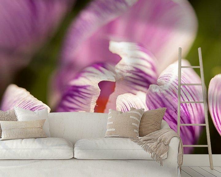 Sfeerimpressie behang: macrofoto van een paarse krokus bloem   fine art foto print   bloemenkunst van Karijn   Fine art Natuur en Reis Fotografie