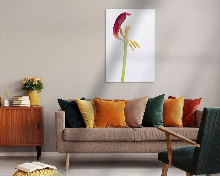Sfeerimpressie: Kreukelige tulp 4. van Pieter van Roijen