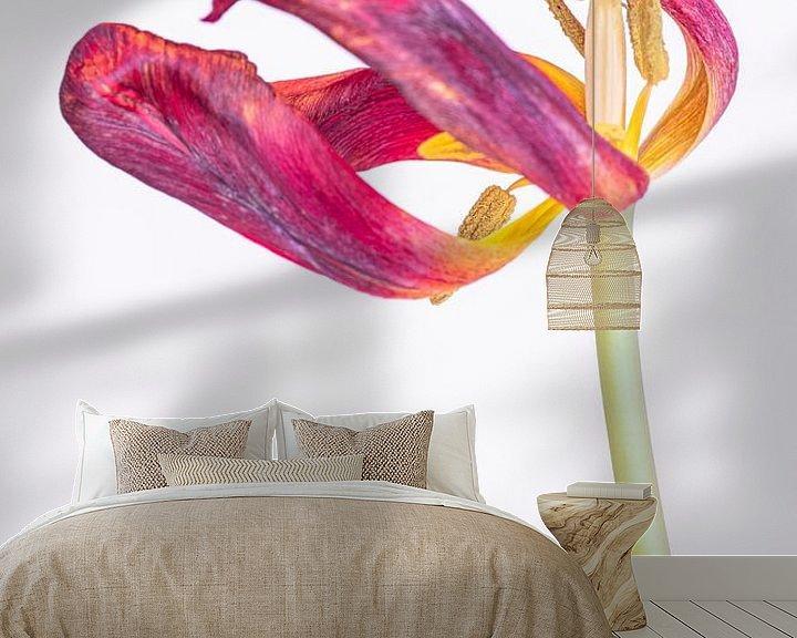 Sfeerimpressie behang: Kreukelige tulp 2, van Pieter van Roijen