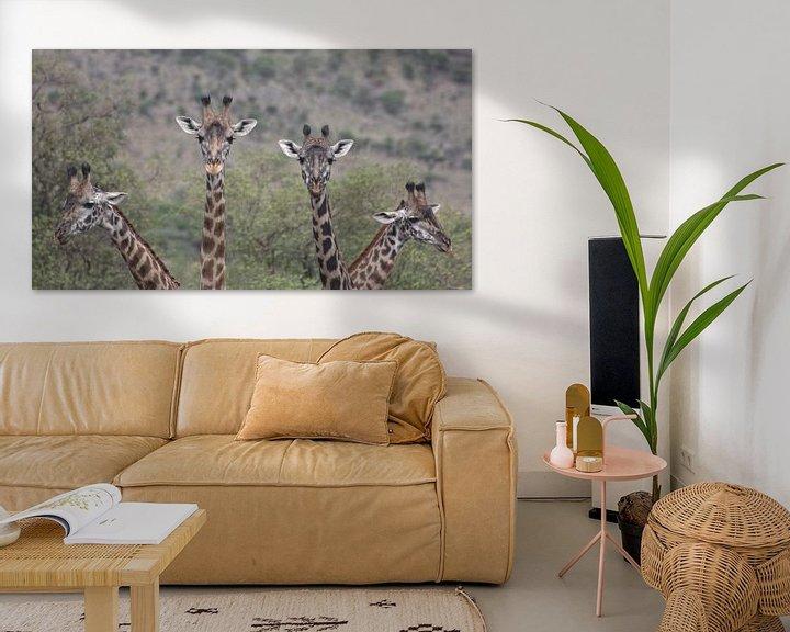 Sfeerimpressie: Giraffe Quartet van BL Photography