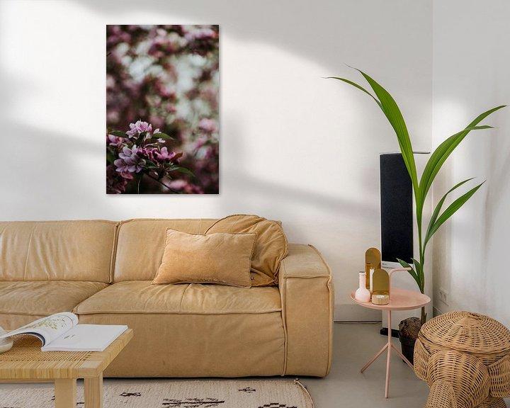 Beispiel: Rosa Frühlingsblüte | Arnheim, Holland von Trix Leeflang