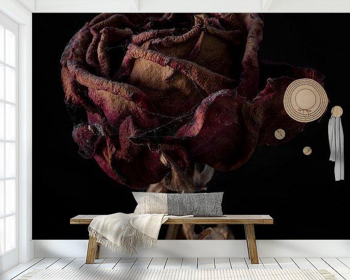 Sfeerimpressie behang: Een rode vergaande roos met zwarte achtergrond van Steven Dijkshoorn
