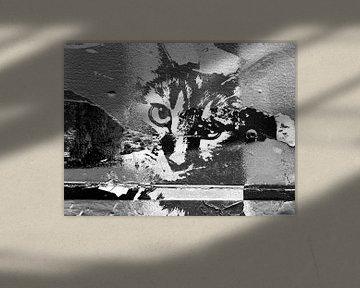 Kattenkunst - Diva 3