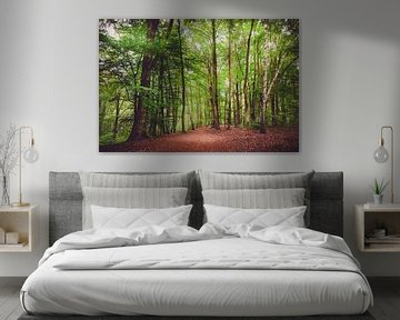 Promenade en forêt sur Skyze Photography by André Stein