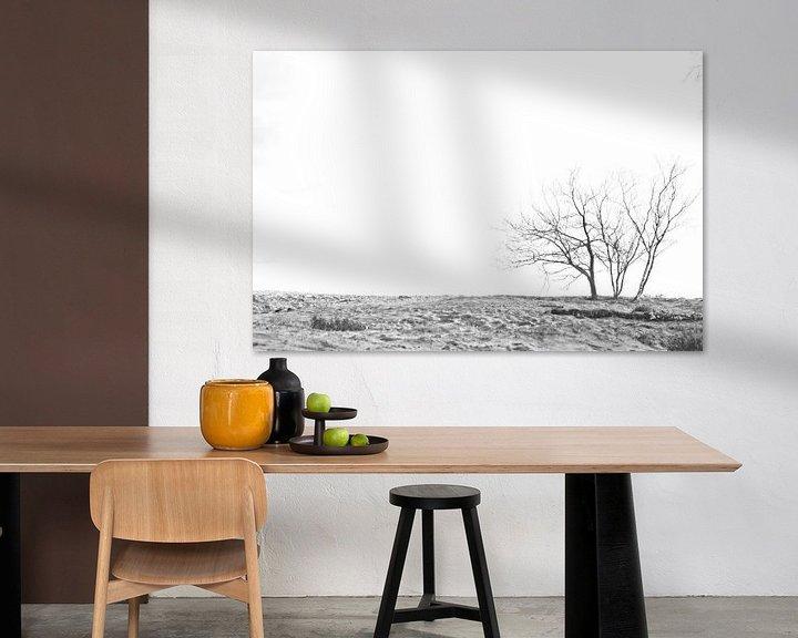 Impression: Des arbres dans le sable sur Dion de Bakker